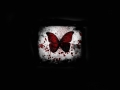 horror-butterfly-27264-hd-wallpapers.jpg